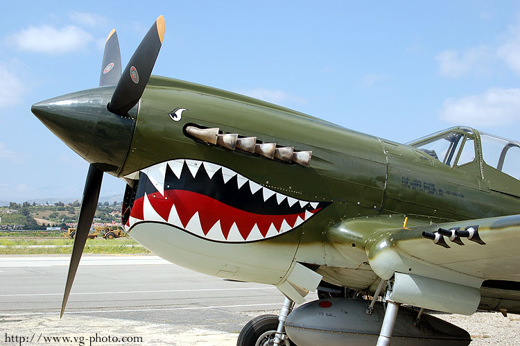 P 40 Warhawk Van Gilder Aviation Ph...