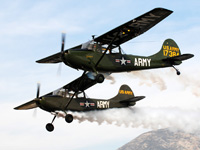 Click here for the L-19 Bird-dogs Puzzle