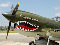 Click here for the P-40 Warhawk puzzle